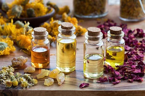 مشک چیست؟ و چه کاربردی در عطرسازی دارد؟